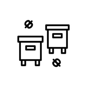 Ablegerkästen & Mini Plus